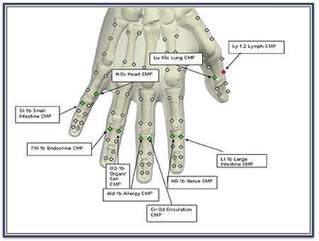 Bioresonance Therapy