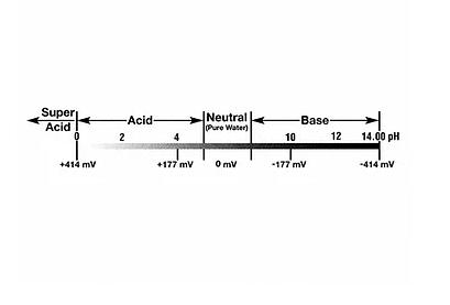 Acid-Base Regulation Therapy