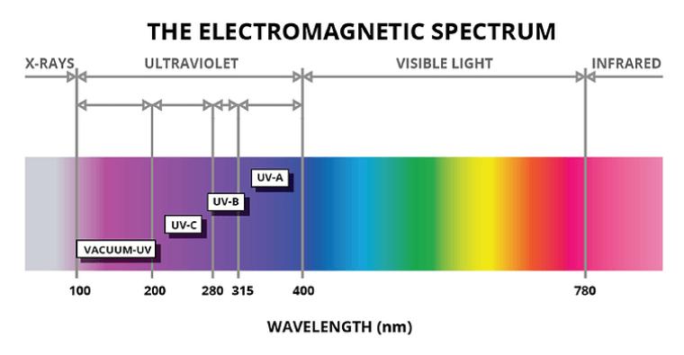 Sunlight and Its Bioregulatory Effects on Human Physiology